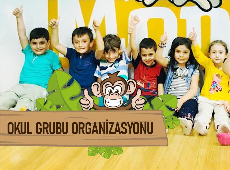 Okul Grubu Organizasyonu